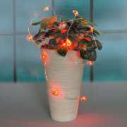 LED Lichterkette, Weihnachtsdeko, 12 rote Herzlichter