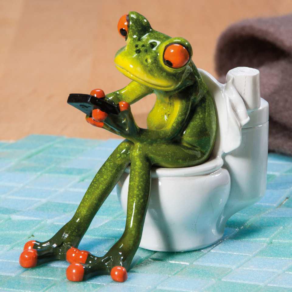 Deko Frosch In WC, Badezimmer U0026 WC Dekofigur